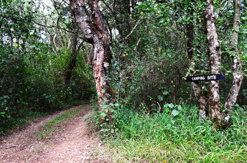 Oloolua Nature Trail_to camping site