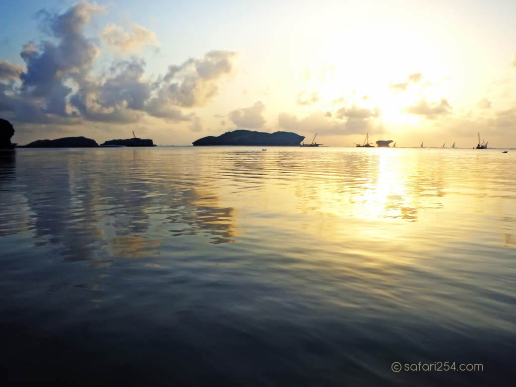 Watamu Beach_coral isolations2