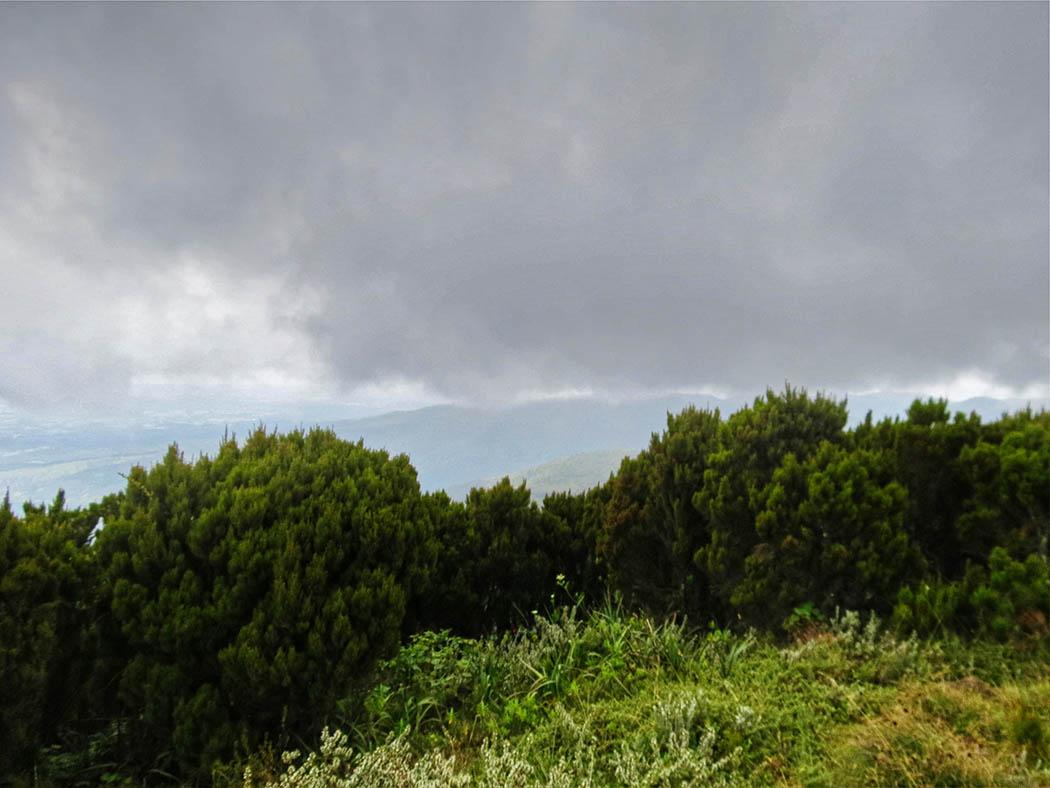 Elephant Hill Aberdares_ascent2