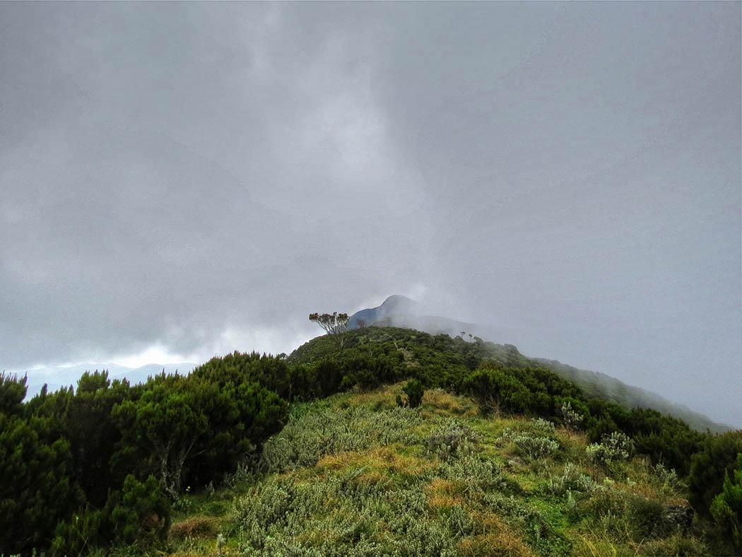 Elephant Hill Aberdares_ascent3