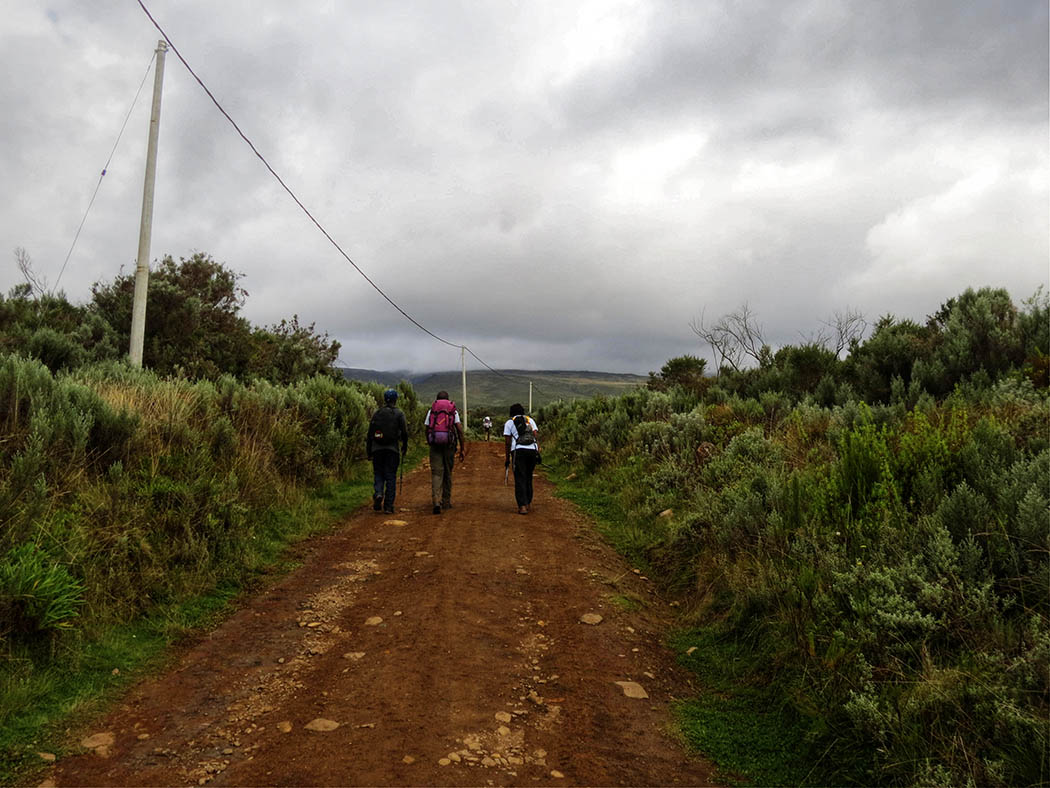 Mount Kenya_beginning hike 2