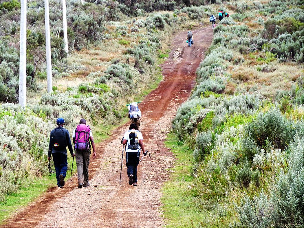 Mount Kenya_beginning hike 3