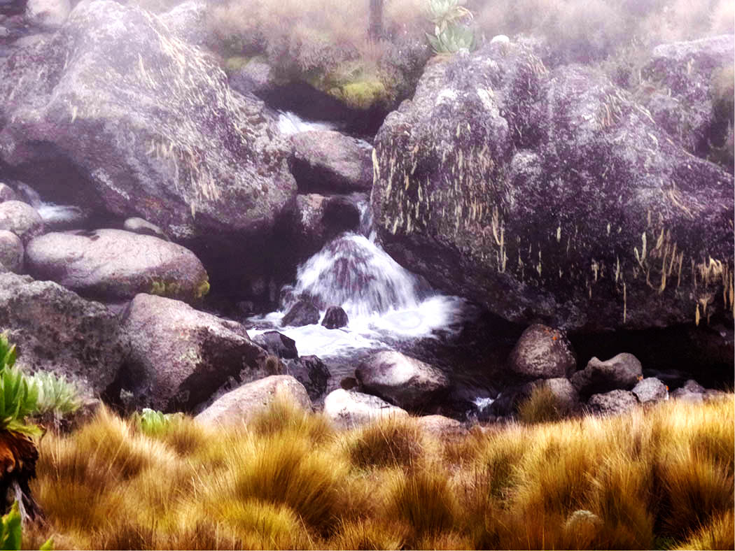 Mount Kenya_stream 5