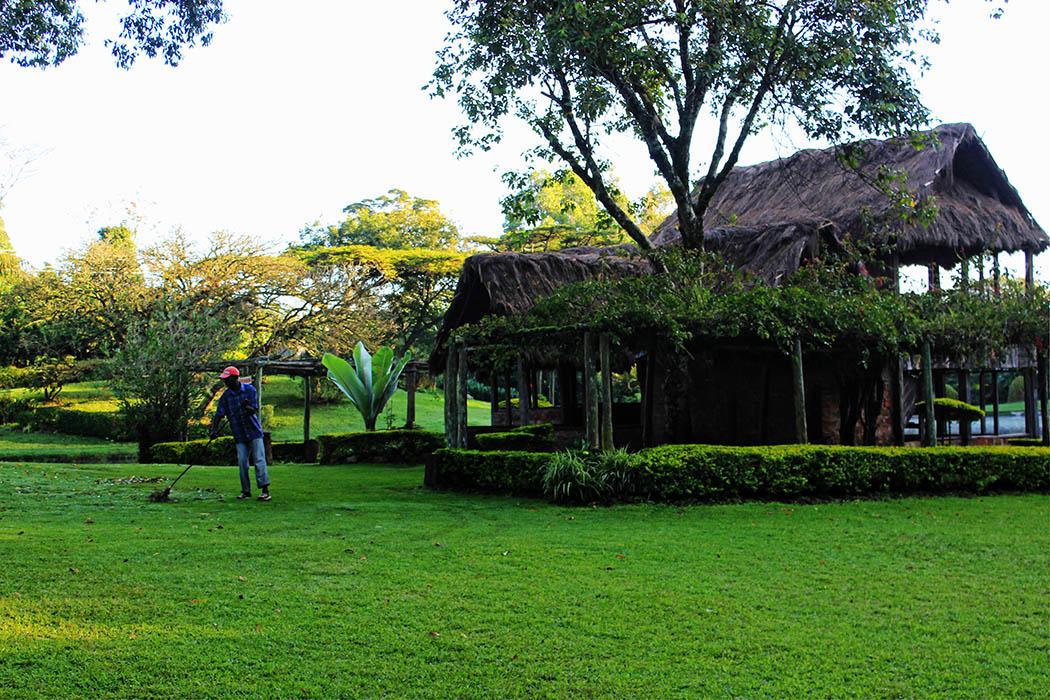 Unexpected Kenya_Kapsimotwa Gardens4
