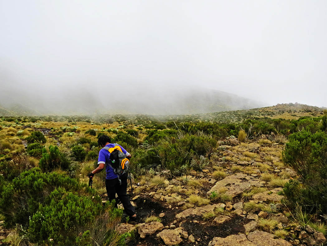 Mount Kenya_Mackinder's valley