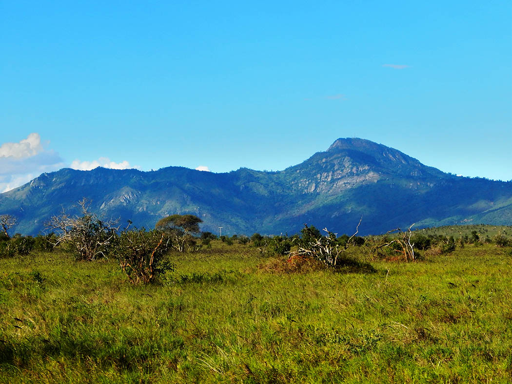 Taita Hills Wildlife Sanctuary_hills