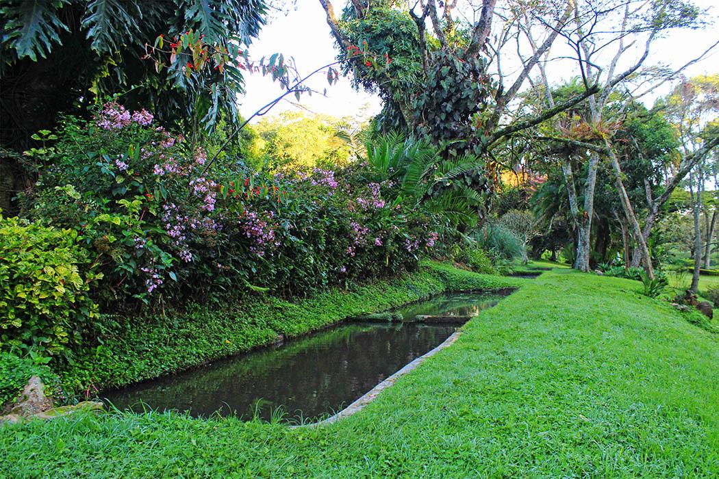 Kapsimotwa gardens_pond