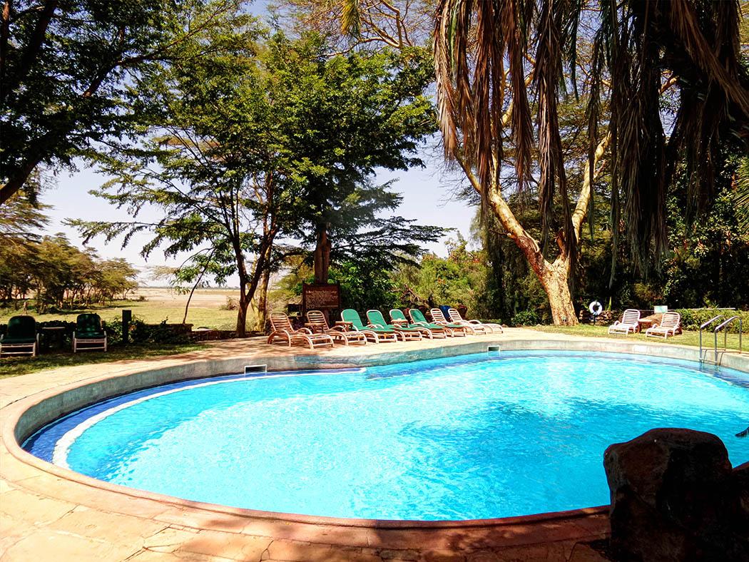 Amboseli Serena Safari Lodge_pool daytime