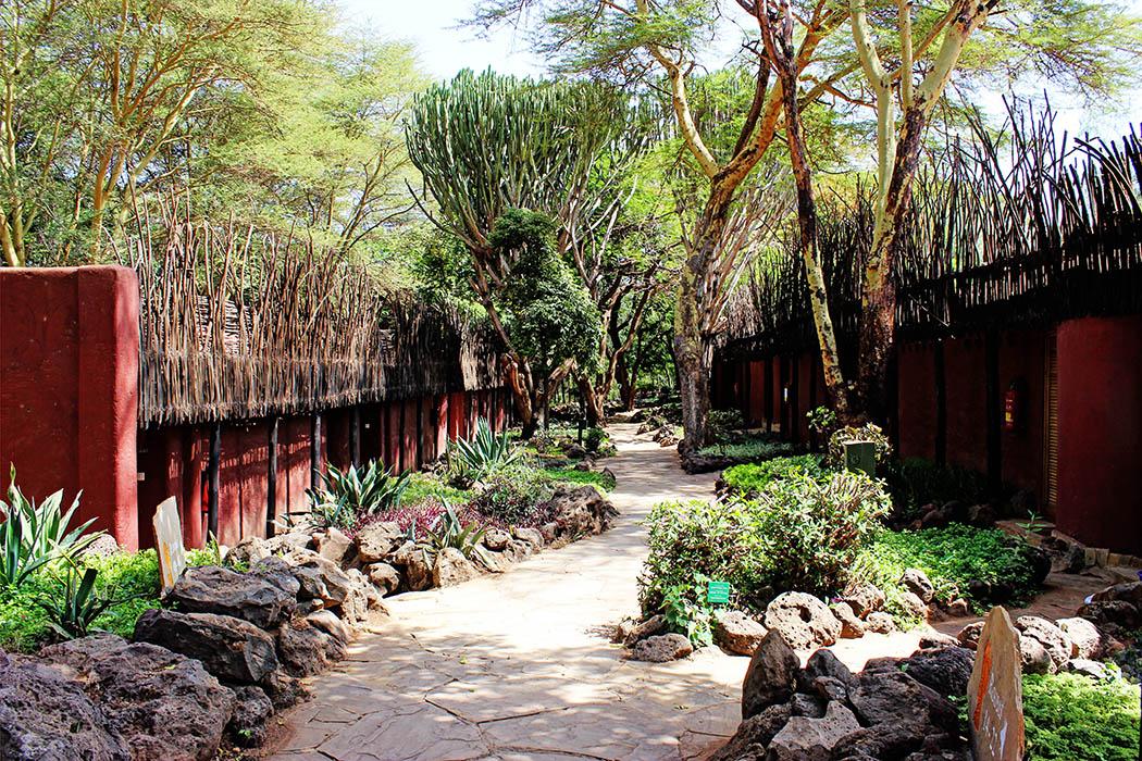 Amboseli Serena Safari Lodge_rooms