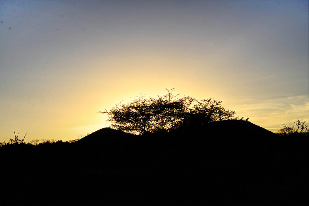 Tsavo West National Park_Dusk2