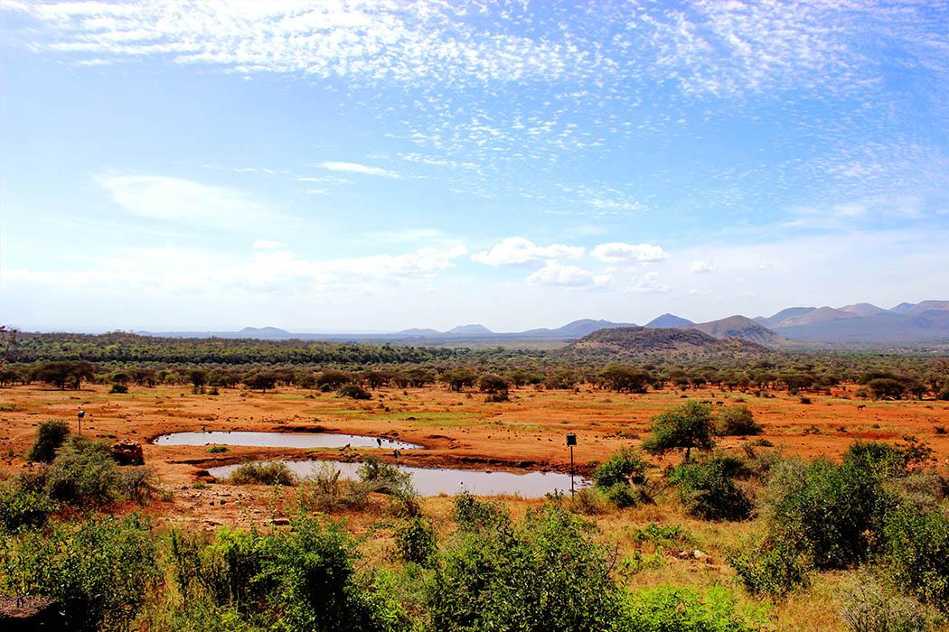 Tsavo West National Park_Waering hole