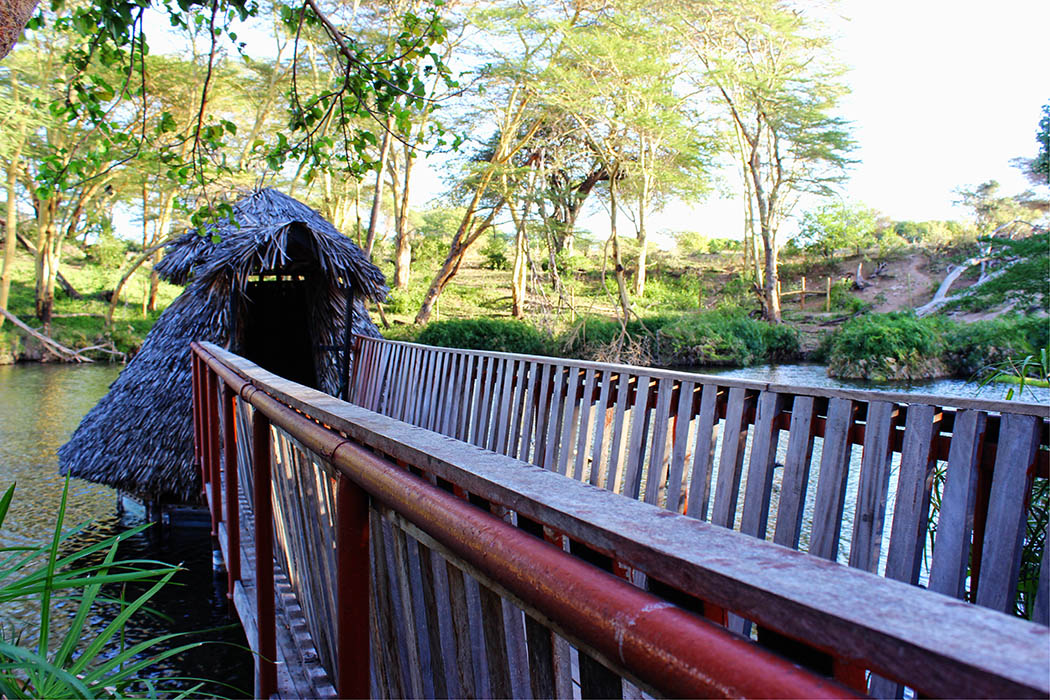 Tsavo West National park_observation hut