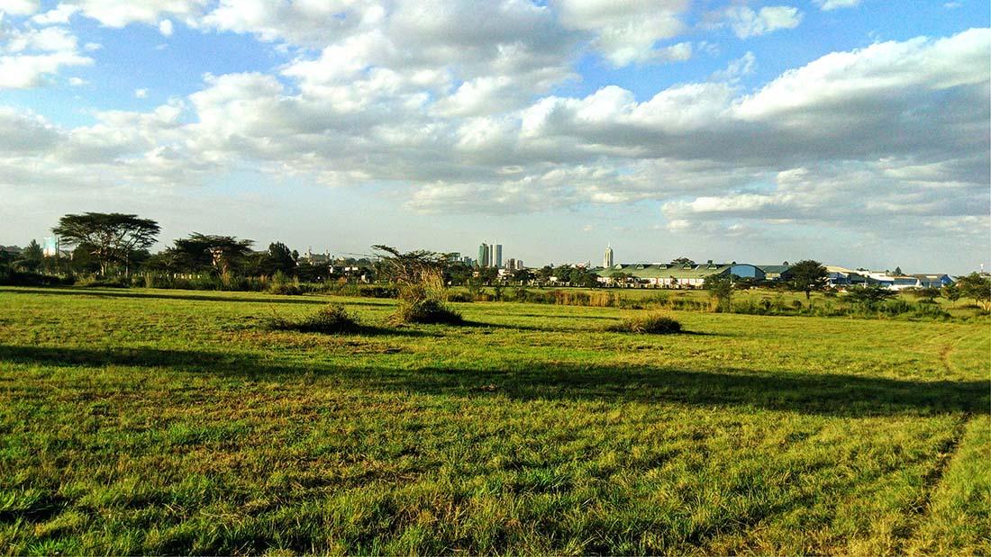 TECNO Camon C5 Review_Uhuru gardens_open field 3