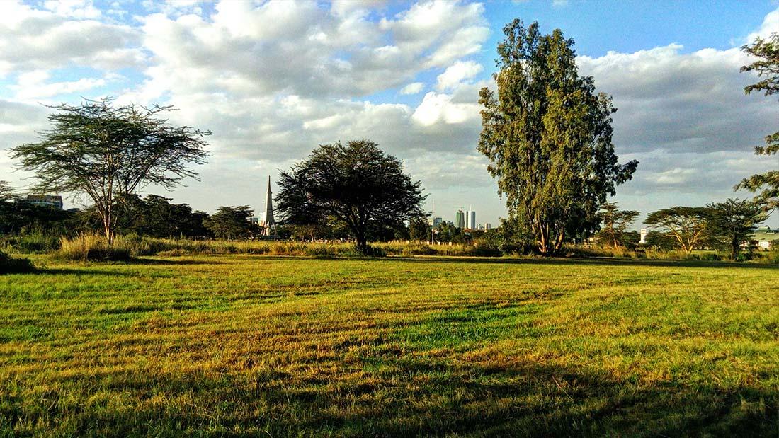 TECNO Camon C5 Review_Uhuru gardens_open field 5
