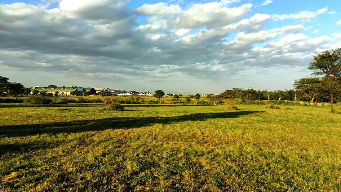 TECNO Camon C5 Review_Uhuru gardens_open field 6