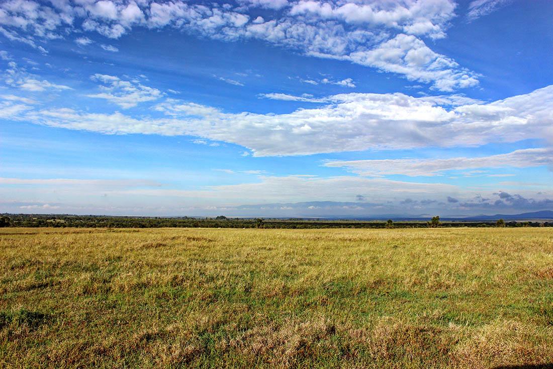 Ol Pejeta Conservancy_scenery