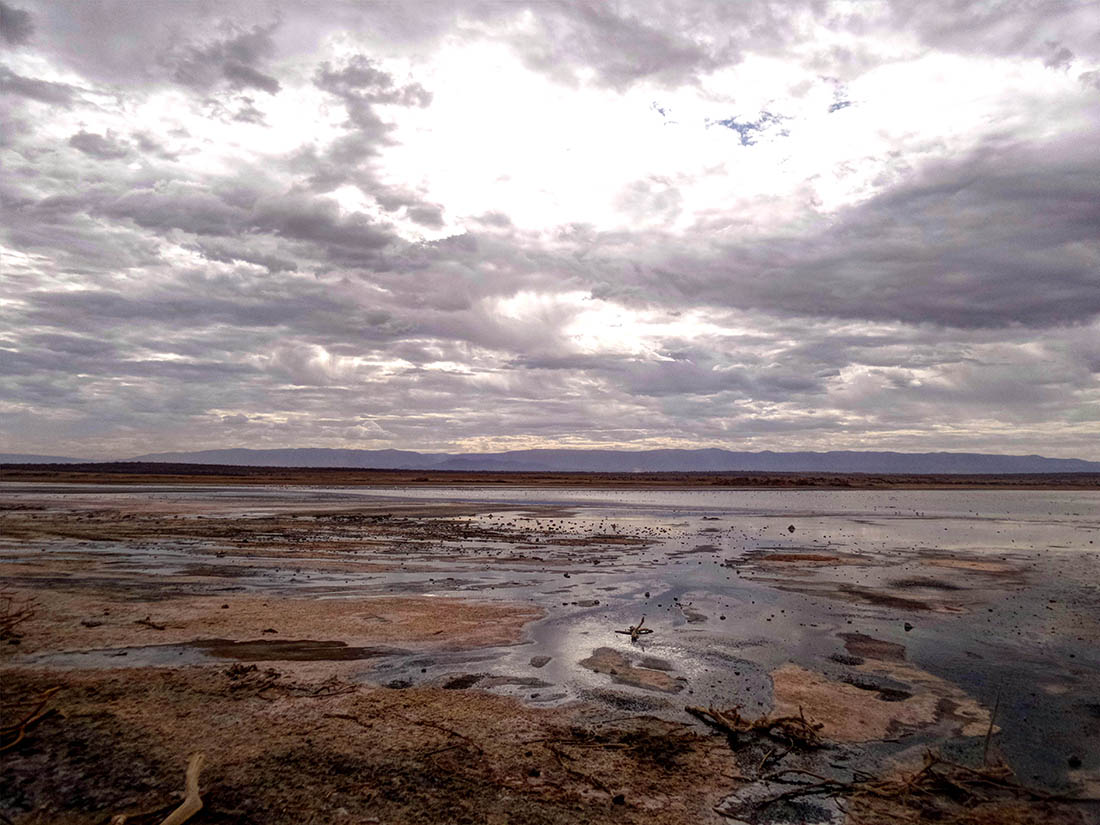 Lake Magadi5