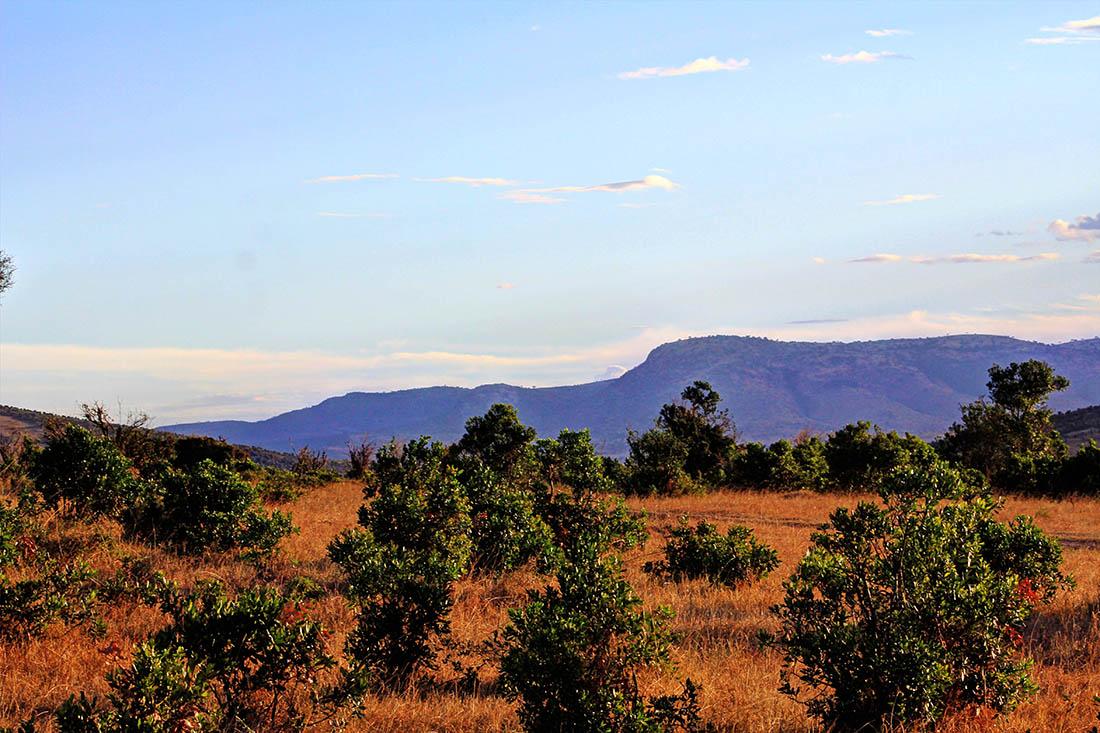 Maasai Mara_Landscape1