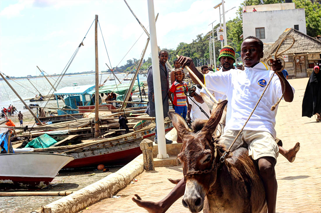Lamu Cultural Festival_donkey race 5