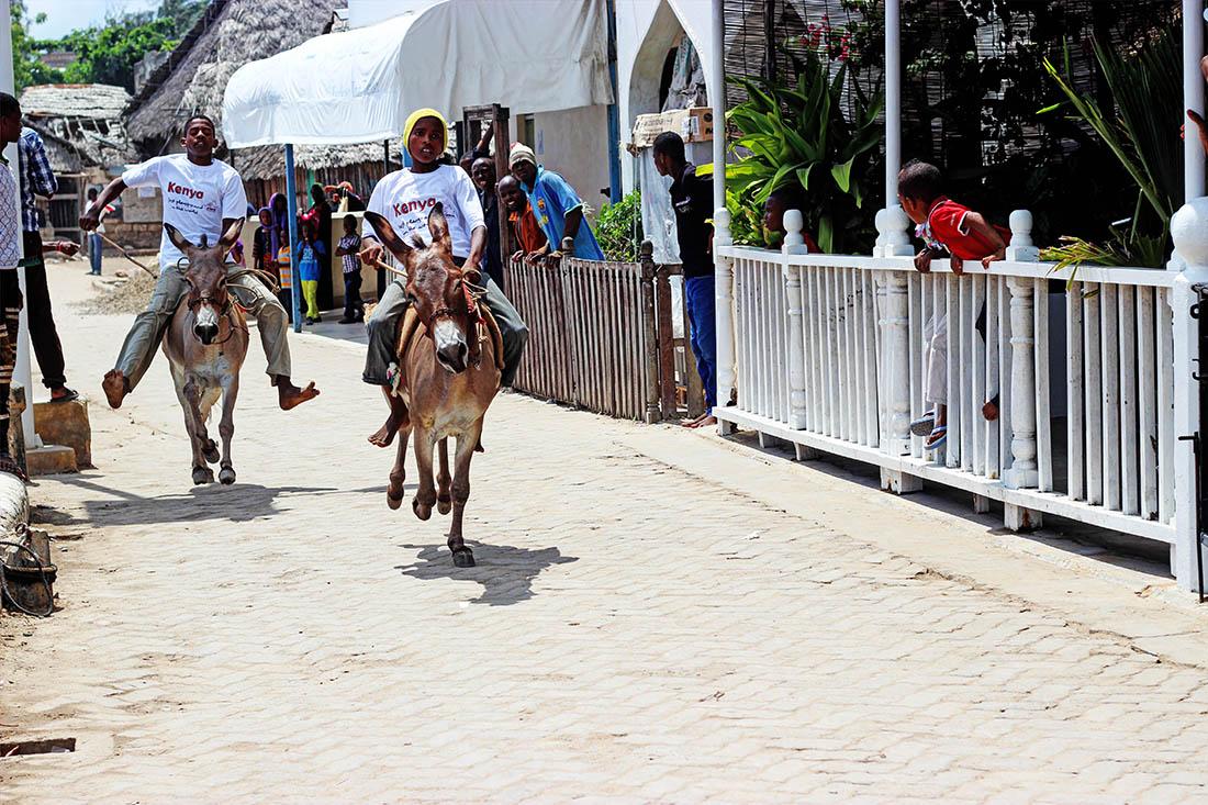 Lamu Cultural Festival_donkey race3