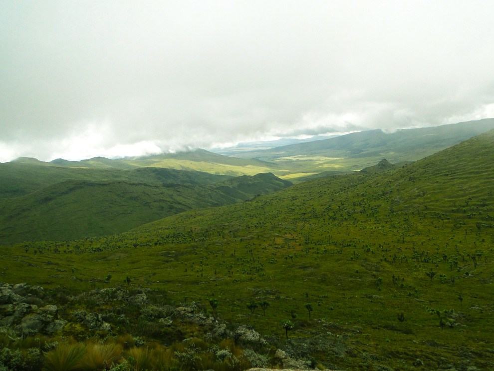 Aberdare National Park_rolling hills and valleys