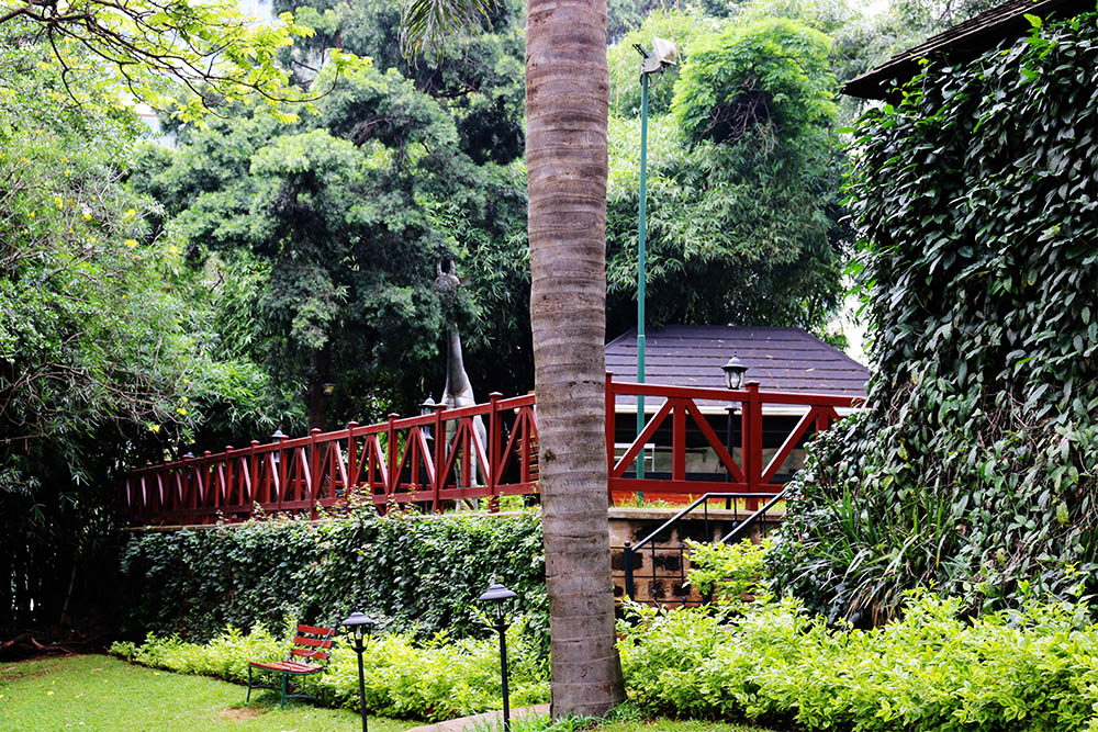 Flame Tree Restaurant_gardens 6