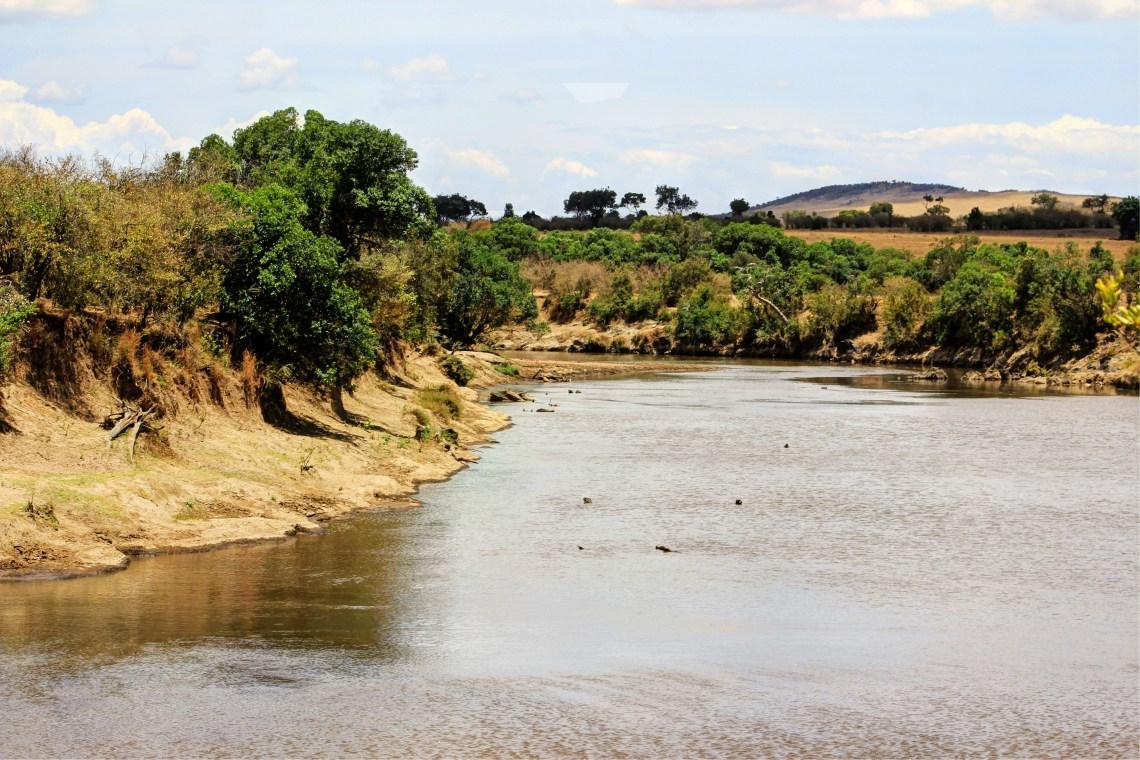 Maasai Mara_Mara River