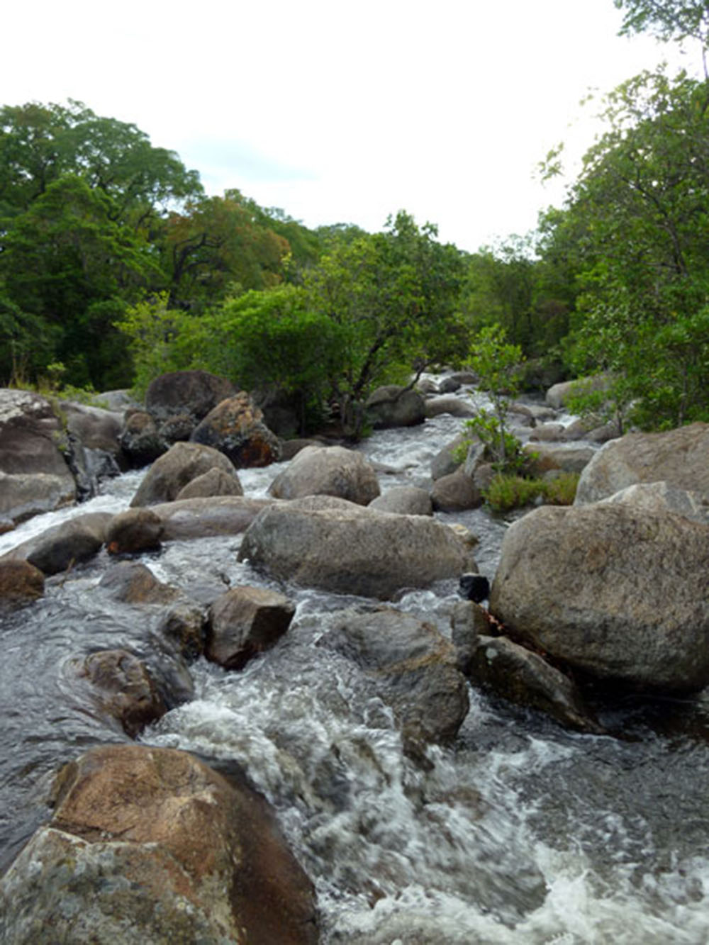 Mount Mulanje_river