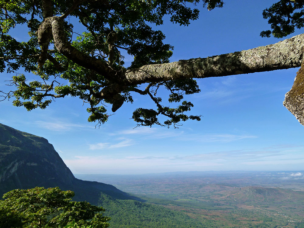Mount Mulanje_view