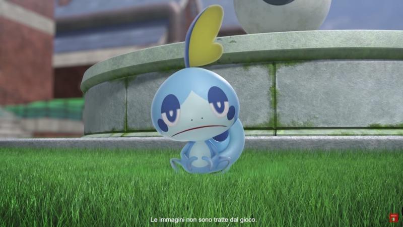 starter acqua pokemon spada e scudo