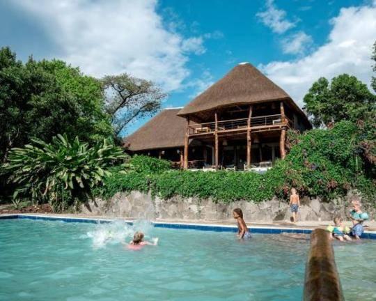 safari-in-oeganda-turaco-treetops_03