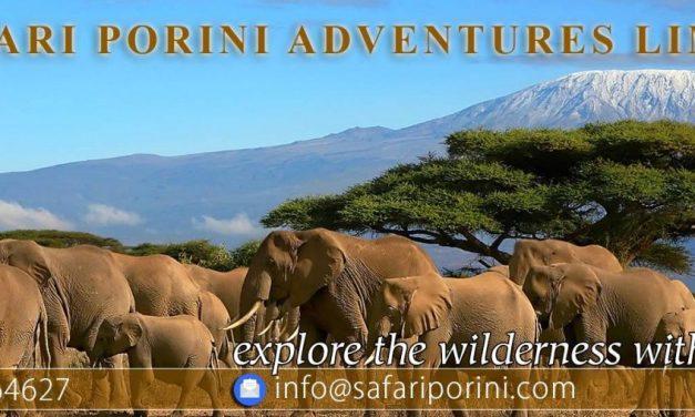 Kilimanjaro Successful Trekking Tips