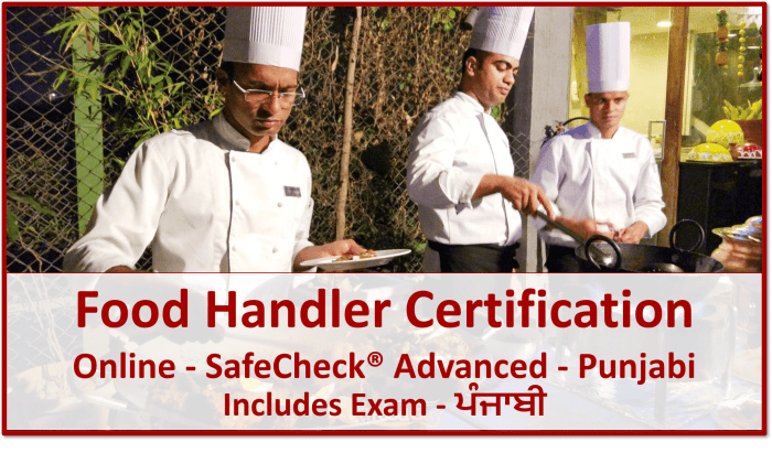 SafeCheck Food Handler Certification - Punjabi