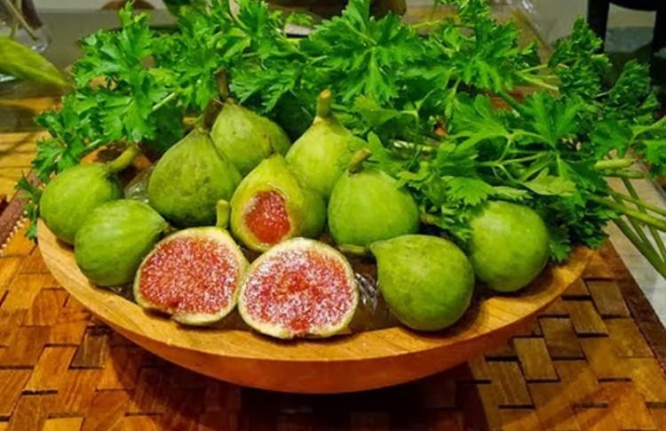 buah tin matang