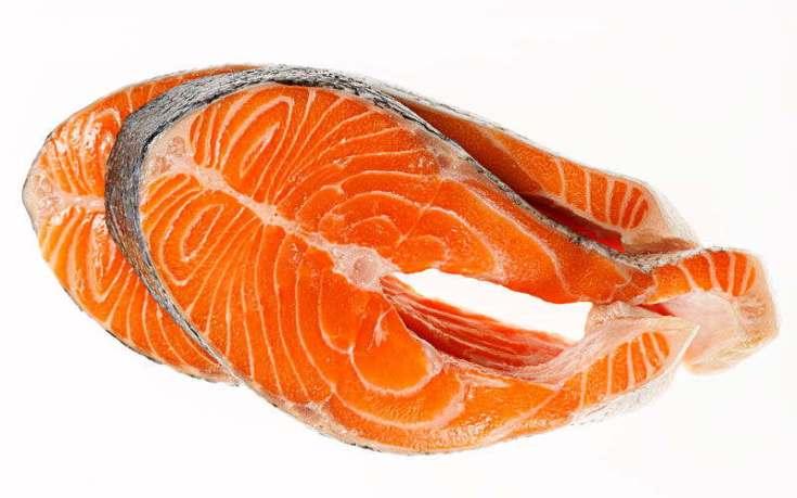 khasiat ikan salmon