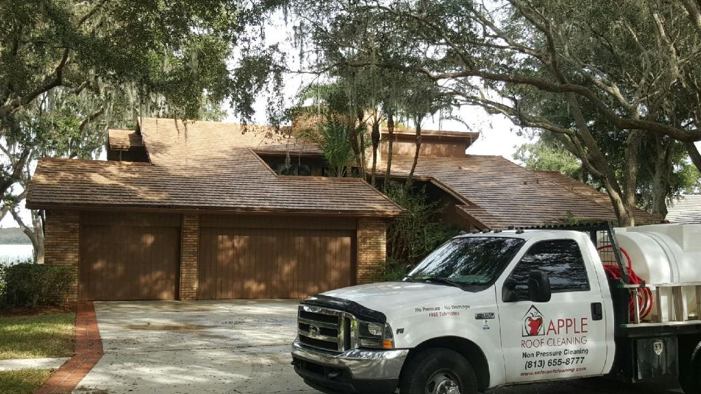 shingle roof cleaned in riverview florida
