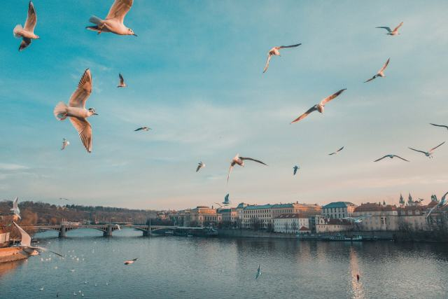 The Best Instagram Spots in Prague