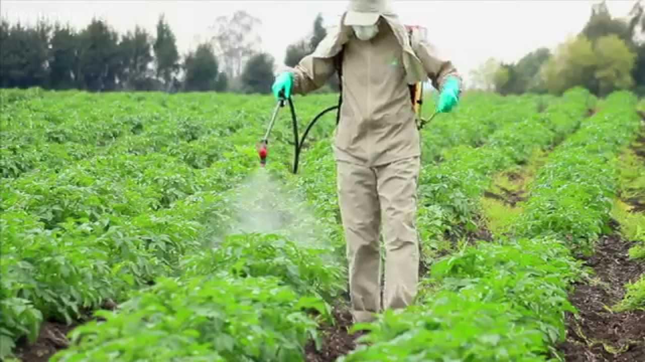 pesticides