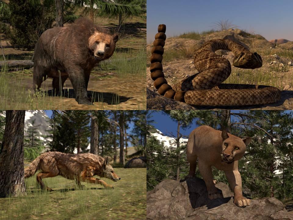Wildlife Awareness (Includes Bear Awareness) Image