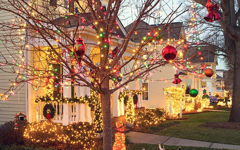 tree outside of house decorated in lights for Christmas