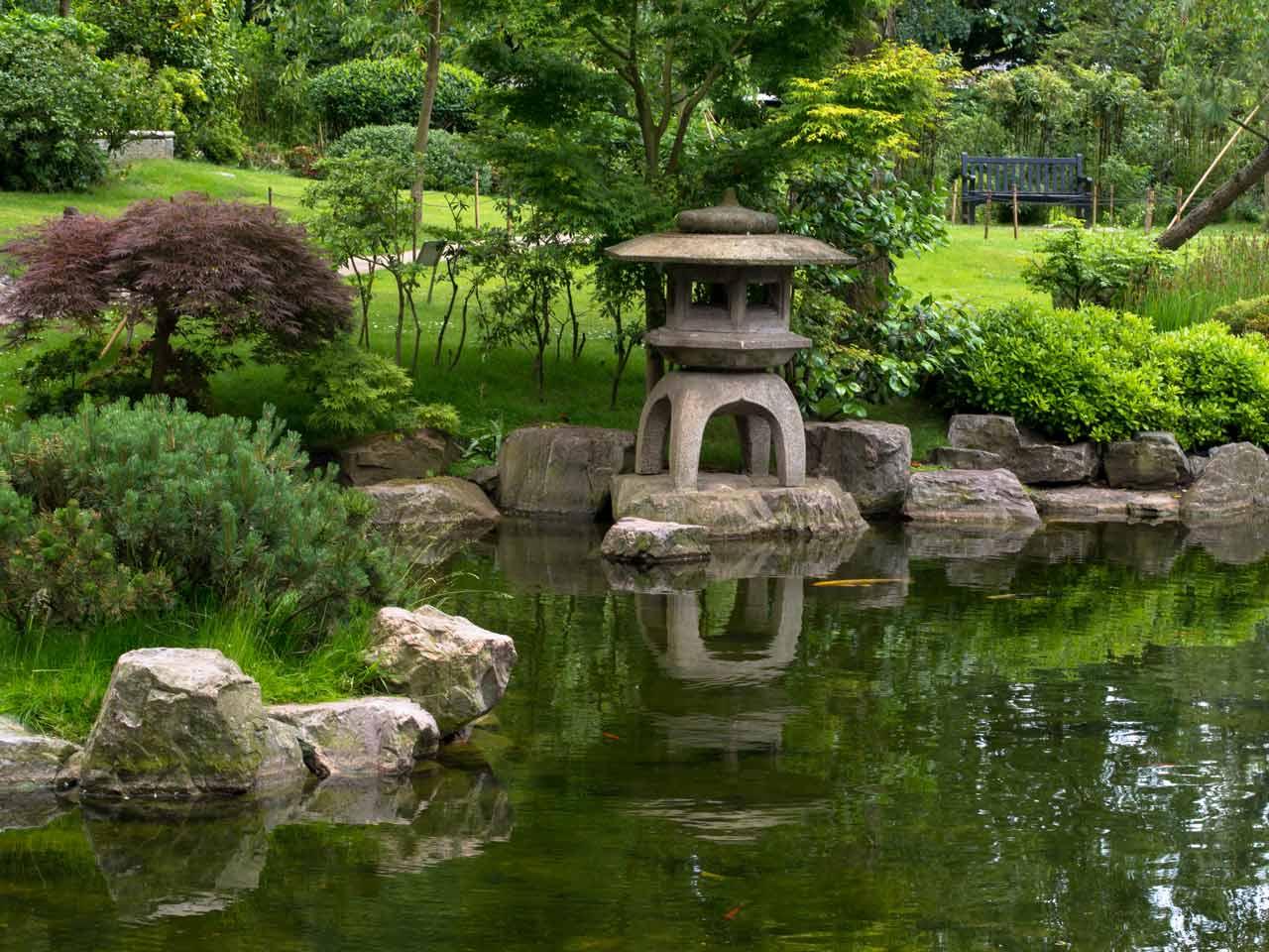 Simple Fish Pond Design