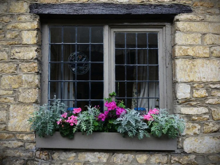 Gardening Ideas For Balconies Patios Courtyards Saga