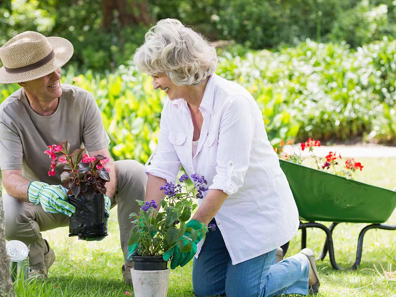 Adjusting Your Relationship To Retirement Saga