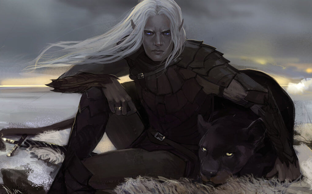 Drizzt Do'Urden stats: Multiclass Fighter 11 / Ranger 8