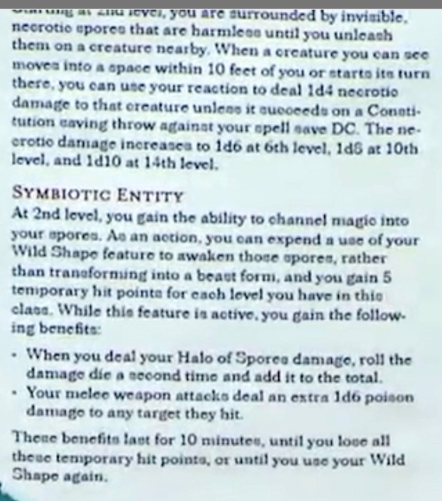 REVEALED: Official Circle of Spores Druid from Guildmasters Guide to