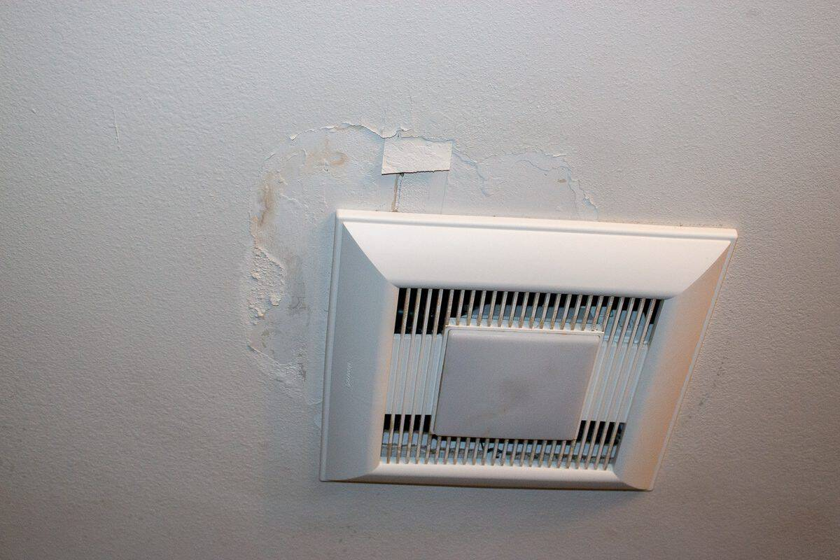 Photo of a bathroom exhaust fan with ceiling damage
