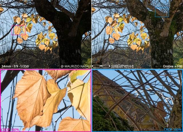 lx100-photo-shadow-details