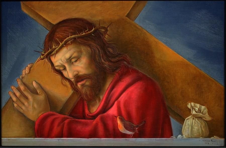 pettirosso Cristo
