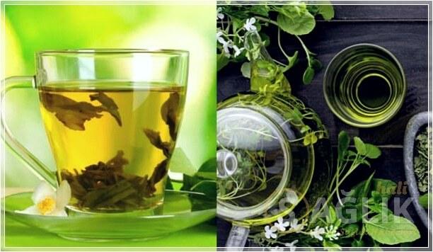 Yeşil Çay Yağ Yakma
