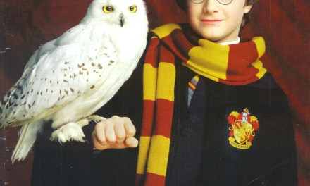 ¡Hasta siempre Harry Potter!